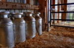Milk jugs in a barn by Kyle Hickman