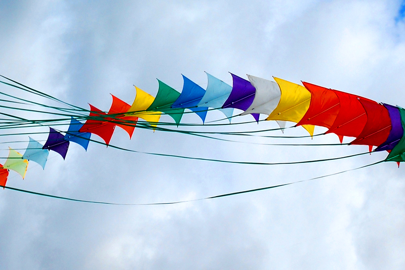 kite flying day Pakistani youths enjoy flying kites during the basant or kite flying festival in   authorities temporarily lifted a ban on kite flying that was imposed.