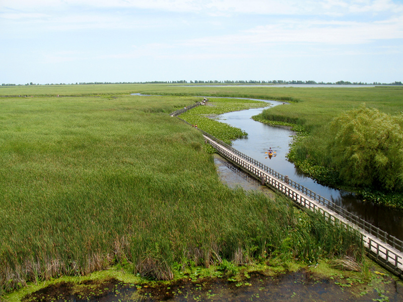 National Parks Summer Guide Point Pelee