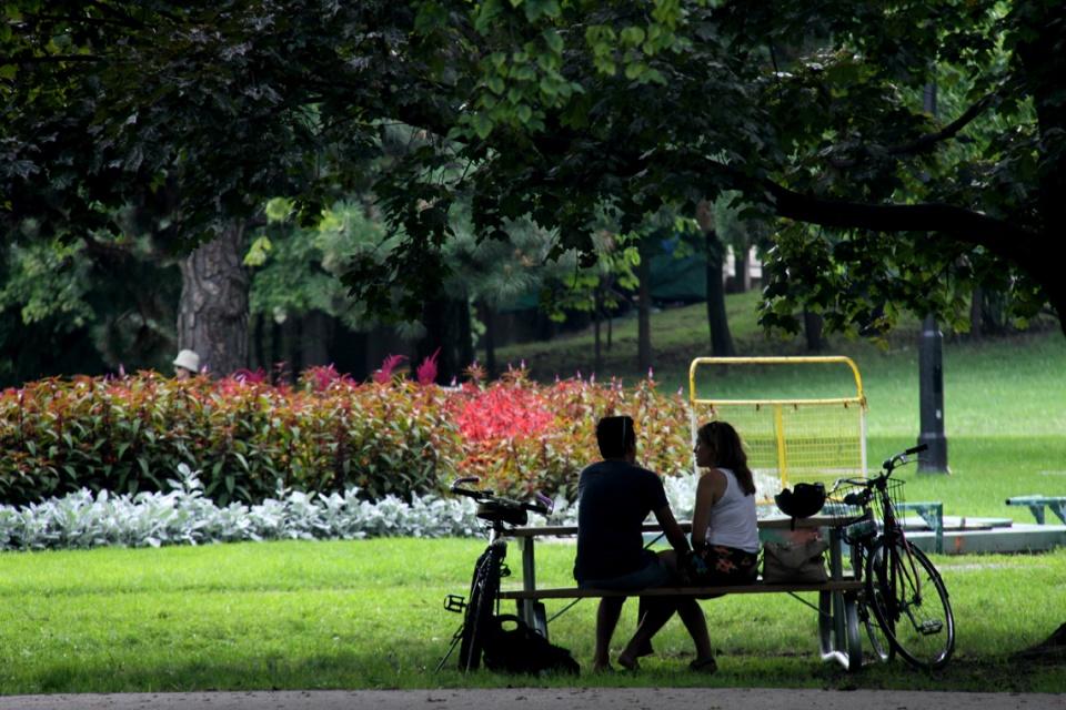 campus picnic essay