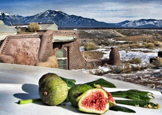 Earthship Systems Food
