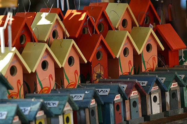 Bird Houses by Andrew Osterberg
