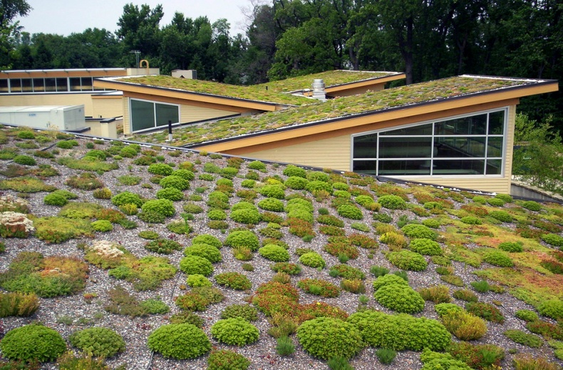 Green Roof by Arlington County