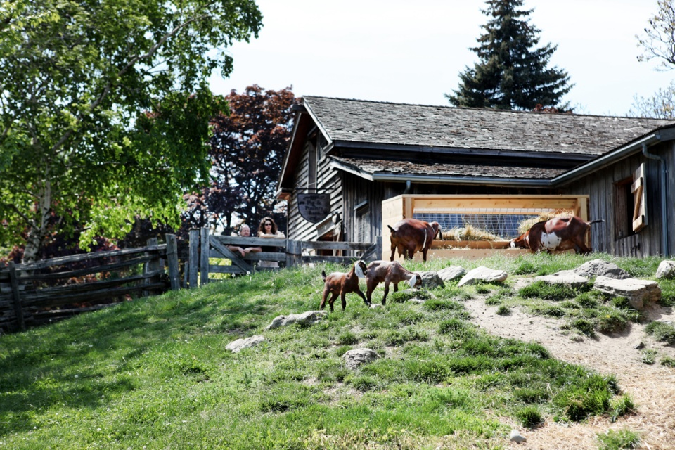 The Riverdale Farm