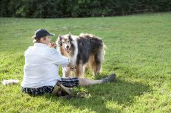 Lassie-came-to-visit-too