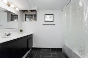 lower-bathroom